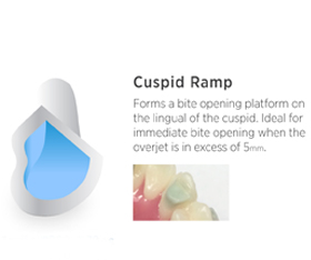 MINI-MOLD-CUSPID-RAMP.jpg